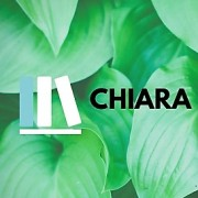ChiaraMaria