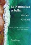 LA NATURALEZA ES BELLA CAÓTICA Y FRACTAL, Vol.I: Los fractales, irreversibilidad, azar y determinismo.