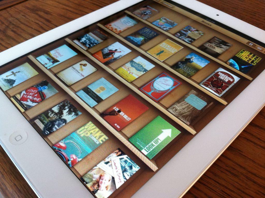 metadatos-librería digital-bubok