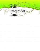 taller integrador fianal