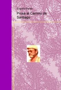 Prosa al Camino de Santiago