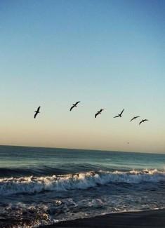 INTENSO AMOR / Una apasionante historia del alma que ama con toda la intensidad del ser divino y universal