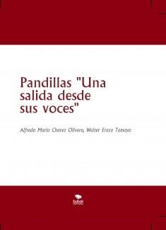 """Pandillas """"Una salida desde sus voces"""""""