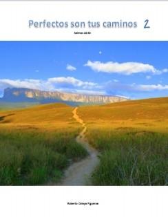 Perfectos son tus caminos 2